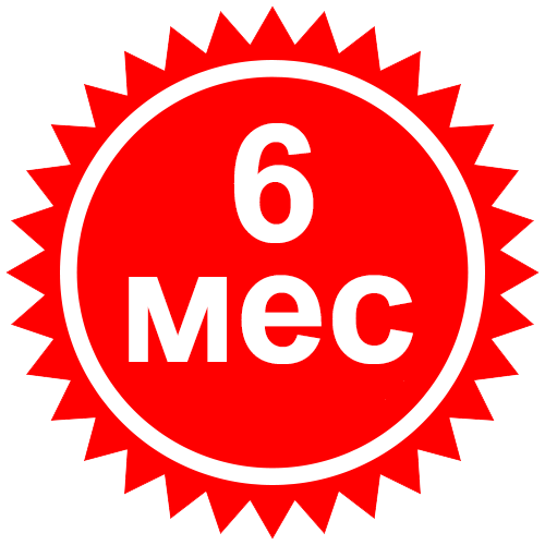 6 МЕС.png